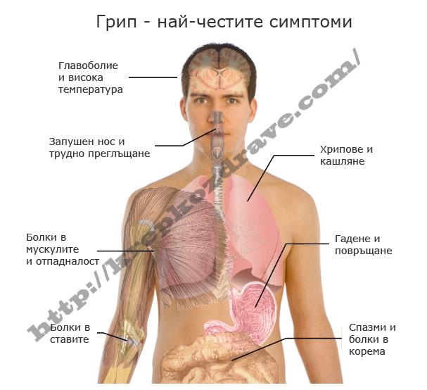 Какво знаем за грипа ? Какви са симптомите на грип ?