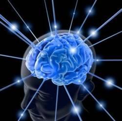 Подобряване на паметта в домашни условия