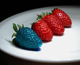 ГМО - колко са опасни?